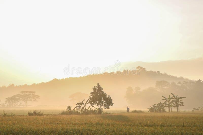 Ήλιος πρωινού σε μια επαρχία στοκ φωτογραφίες