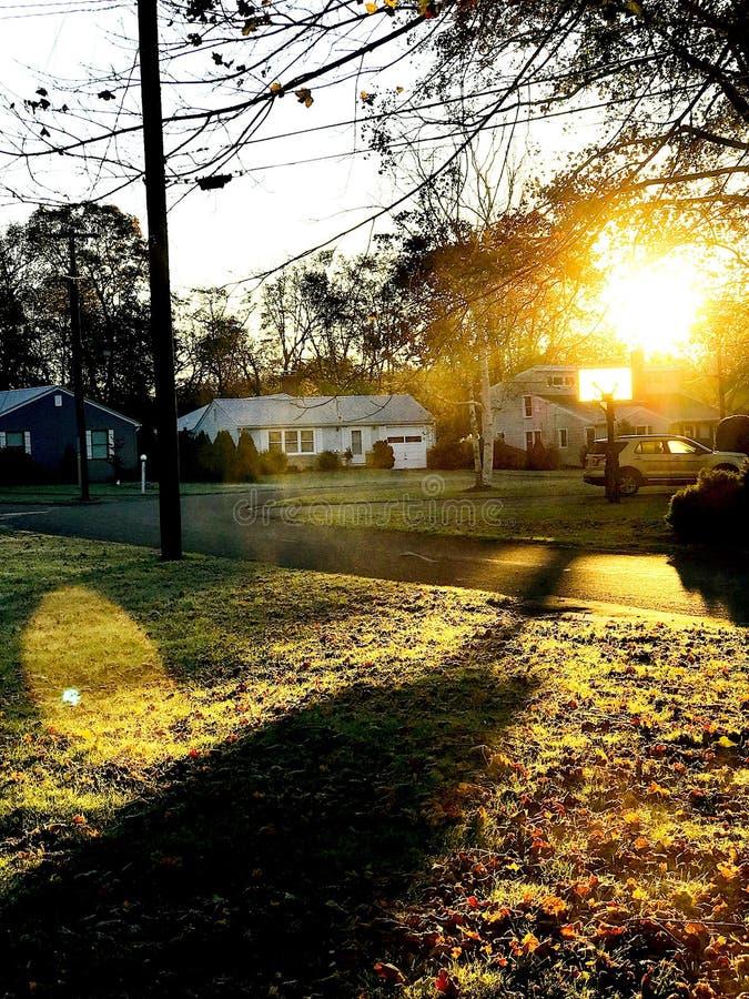 Ήλιος πρωινού στοκ εικόνα