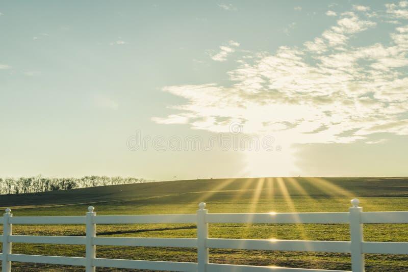 Ήλιος Starburst πέρα από ένα πράσινο Hill με έναν άσπρο φράκτη στοκ εικόνα με δικαίωμα ελεύθερης χρήσης