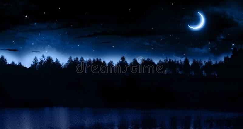 Ήρεμη θερινή νύχτα ελεύθερη απεικόνιση δικαιώματος
