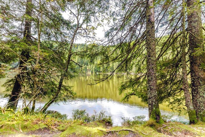 Ήρεμη λίμνη βουνών με τις αντανακλάσεις στοκ φωτογραφία με δικαίωμα ελεύθερης χρήσης