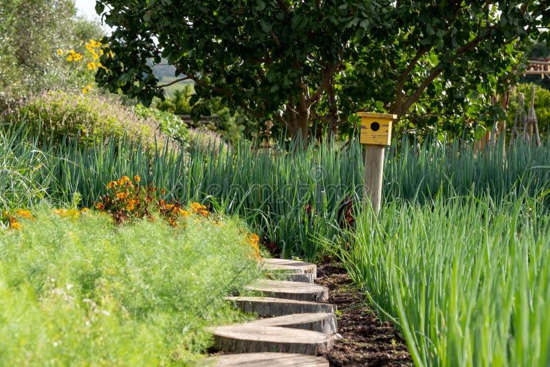 Ήρεμος, καλά εφοδιασμένος κήπος με ποικίλες εγκαταστάσεις, και το κίτρινο σπίτι πουλιών στο τέλος της πορείας στοκ φωτογραφία