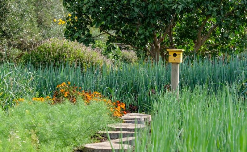 Ήρεμος, καλά εφοδιασμένος κήπος με ποικίλες εγκαταστάσεις, και το κίτρινο σπίτι πουλιών στο τέλος της πορείας στοκ εικόνα