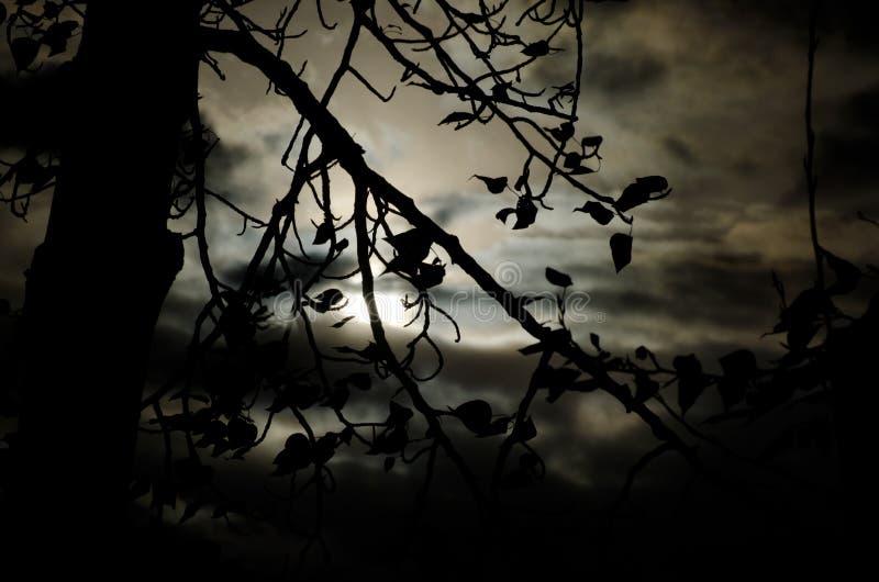 Ήταν μια σκοτεινή και θυελλώδης νύχτα στοκ φωτογραφίες με δικαίωμα ελεύθερης χρήσης