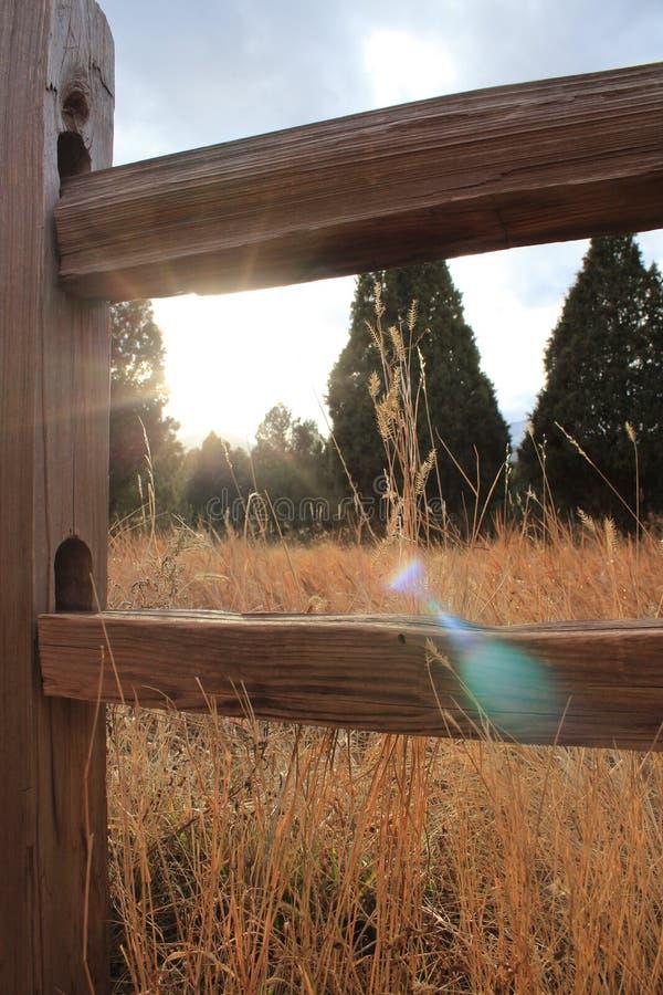 Ήλιος που κρυφοκοιτάζει κατευθείαν στοκ φωτογραφίες με δικαίωμα ελεύθερης χρήσης