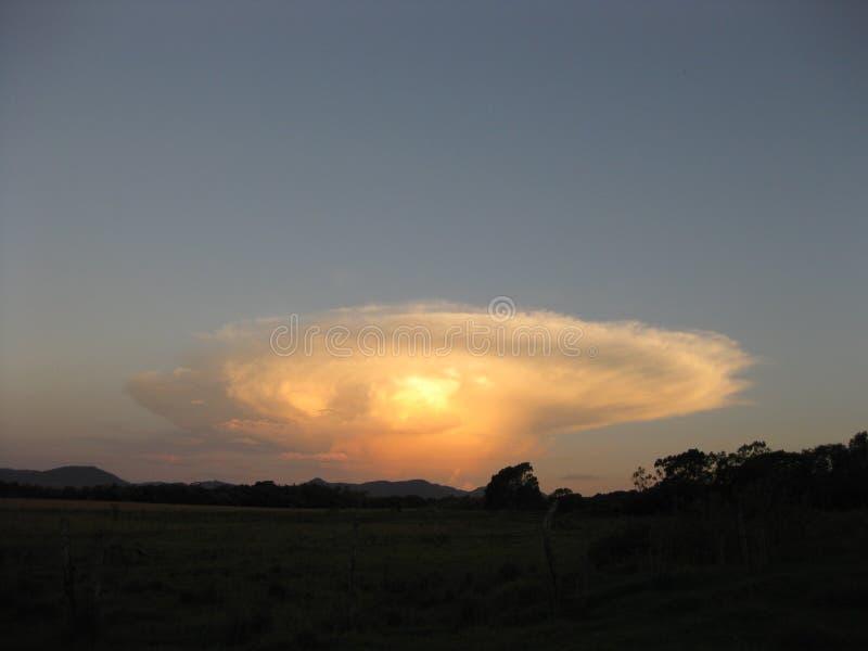 Ήλιος Risin πίσω από έναν φοίνικα κοκοφοινίκων Mbocyaty στοκ φωτογραφία με δικαίωμα ελεύθερης χρήσης