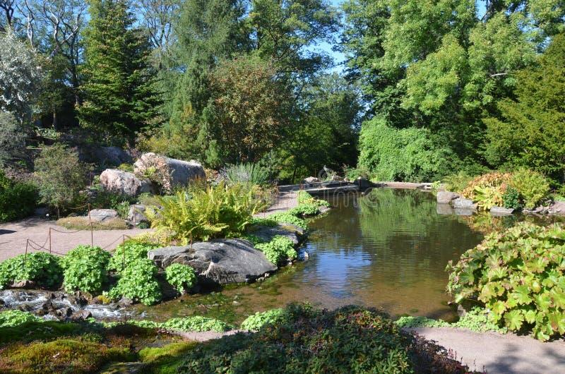 λίμνη κήπων στοκ φωτογραφία με δικαίωμα ελεύθερης χρήσης