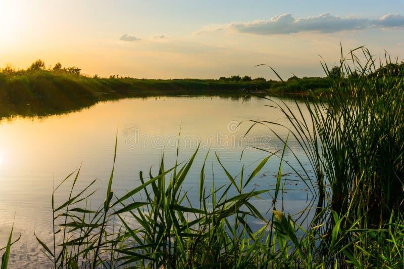 λίμνη πέρα από το ηλιοβασίλεμα στοκ φωτογραφία