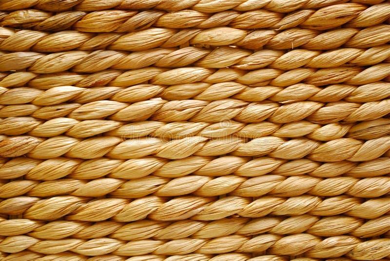 Download ίνα ανασκόπησης φυσική στοκ εικόνες. εικόνα από ίνα, θάλασσα - 13179366