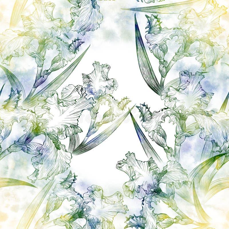 ίριδες πρότυπο άνευ ραφής Λουλούδια, φύλλα, μίσχοι και οφθαλμοί των ίριδων Ταπετσαρία ζωγραφικής Watercolor ελεύθερη απεικόνιση δικαιώματος