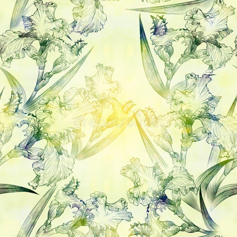 ίριδες πρότυπο άνευ ραφής Λουλούδια, φύλλα, μίσχοι και οφθαλμοί των ίριδων ταπετσαρία ελεύθερη απεικόνιση δικαιώματος