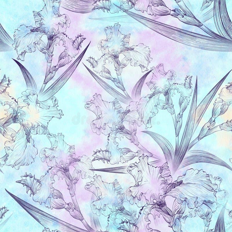 ίριδες πρότυπο άνευ ραφής Λουλούδια, φύλλα, μίσχοι και οφθαλμοί των ίριδων διανυσματική απεικόνιση