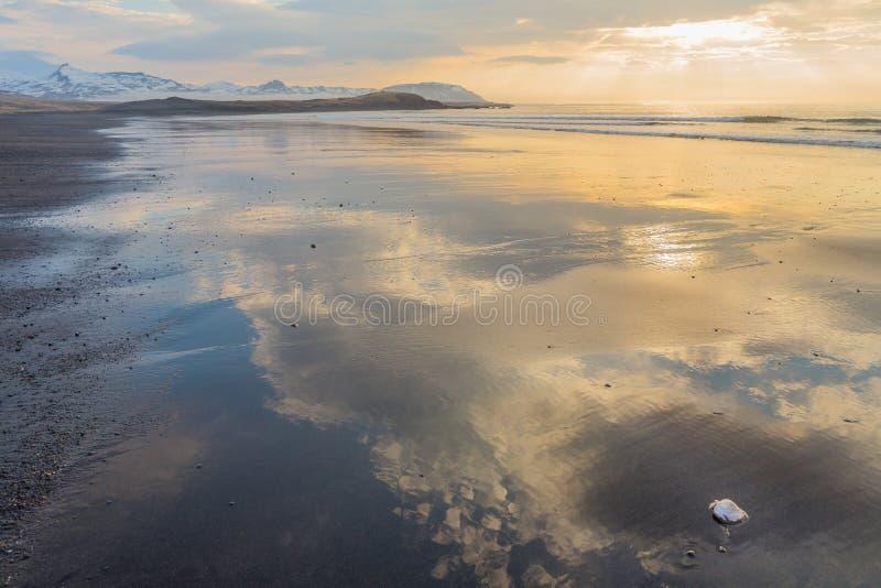 Ίσαλη γραμμή στην παραλία Brimilsvellir με τα κοχύλια και τις αντανακλάσεις στοκ φωτογραφίες με δικαίωμα ελεύθερης χρήσης