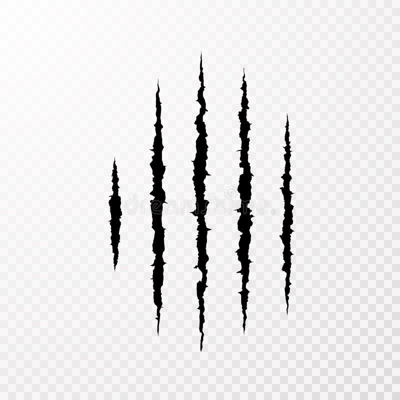 Ίχνη από τα νύχια του τέρατος Σημάδι γρατσουνιών νυχιών Ζωική γρατσουνιά στο διαφανές υπόβαθρο Έγγραφο αποκομμάτων διάνυσμα διανυσματική απεικόνιση