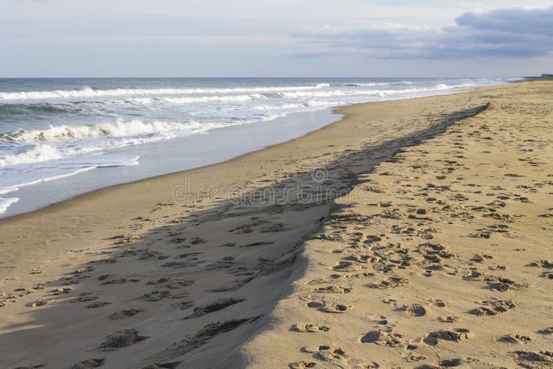 Ίχνη στην άμμο στην παραλία της Βιρτζίνια, VA στοκ φωτογραφία