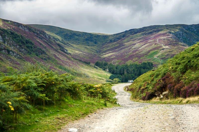 Ίχνος πεζοπορίας στο εθνικό πάρκο Cairngorms Angus, Σκωτία, UK στοκ εικόνα