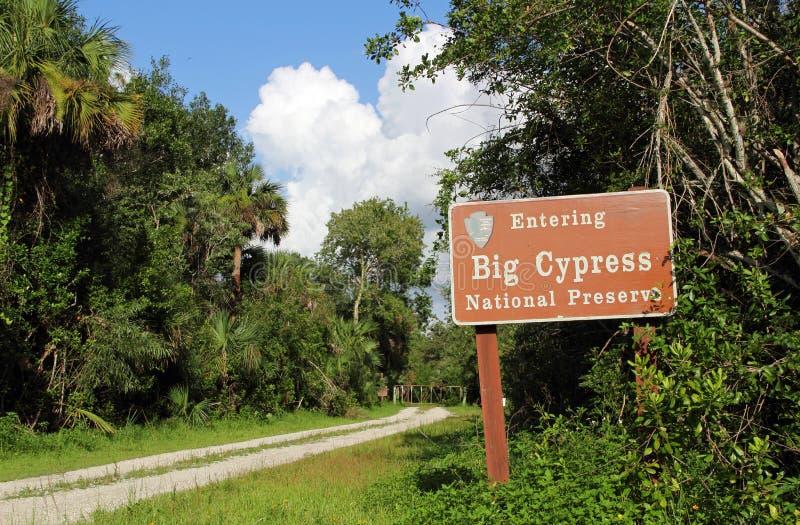 Ίχνος πεζοπορίας Everglades στοκ εικόνες