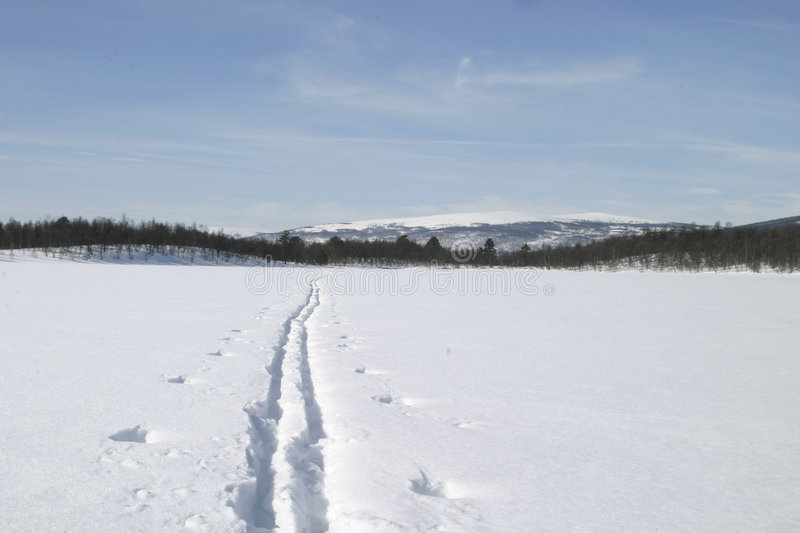 Download ίχνος σκι στοκ εικόνα. εικόνα από ευρώπη, άσκηση, λίμνη - 104207