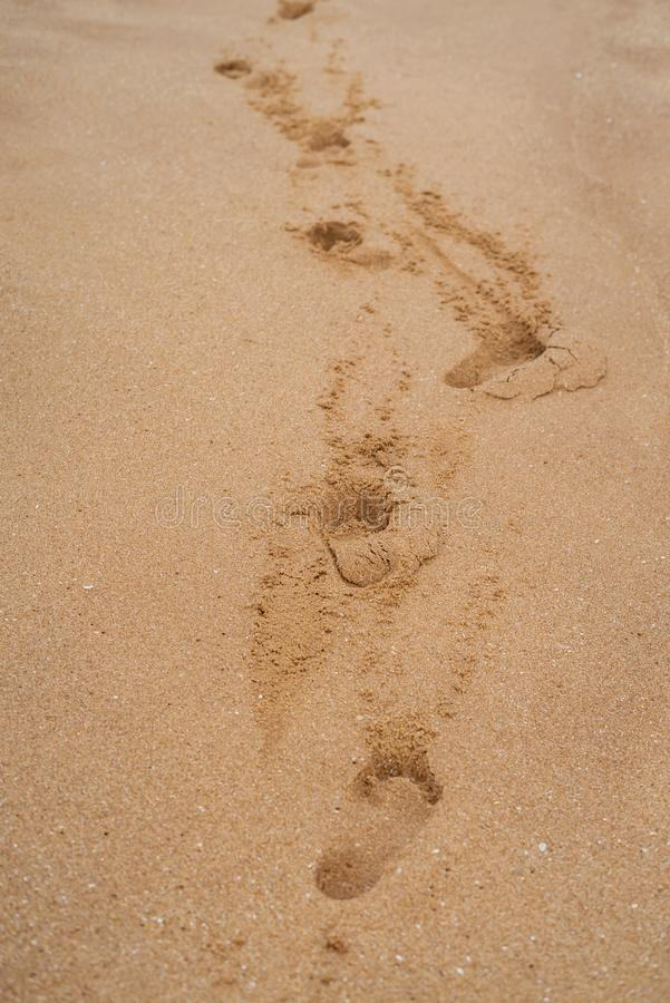 Ίχνος στην παραλία στην άμμο στην απόσταση στοκ φωτογραφία