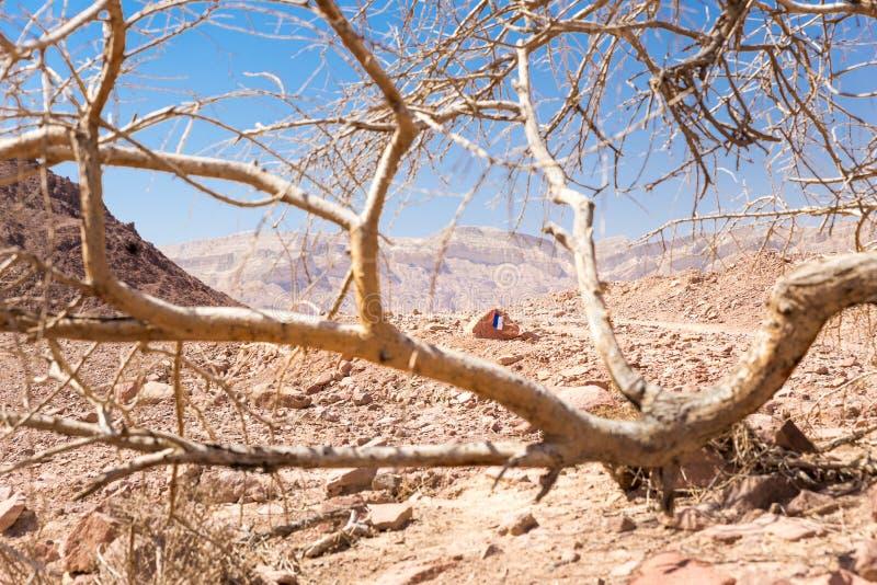 Ίχνος ταξιδιού ερήμων του Ισραήλ Shvil που χαρακτηρίζει το σημάδι στοκ φωτογραφία με δικαίωμα ελεύθερης χρήσης