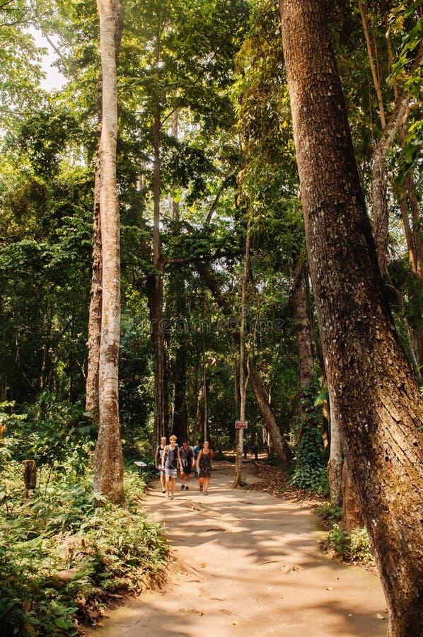 Ίχνος φύσης κάτω από το μεγάλο δέντρο στον καταρράκτη Si Kuang σε Luang Prabang, Λάος κατά τη διάρκεια θερινή περίοδο στοκ φωτογραφίες με δικαίωμα ελεύθερης χρήσης