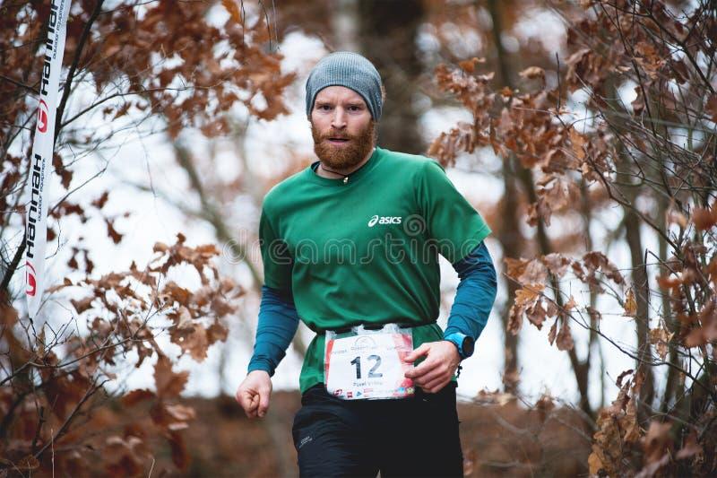 Ίχνος Krkavec της Hannah Πίλζεν Νέο τρέχοντας άτομο και φθινοπωρινό υπόβαθρο στοκ φωτογραφίες με δικαίωμα ελεύθερης χρήσης