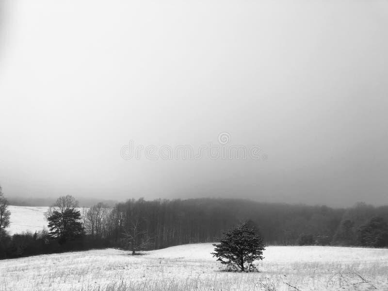 αέρας στοκ φωτογραφίες