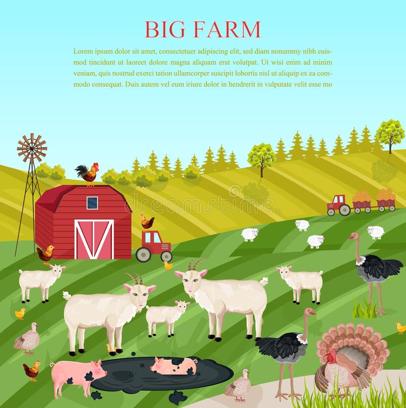 Αίγες, χοίροι και ζώα κοτόπουλου στο αγροτικό διάνυσμα πράσινο καλοκαίρι ανασκόπησης απεικόνιση αποθεμάτων