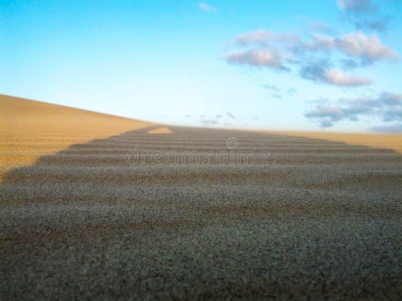Αβυσαλλέα έρημος σε όλη τη λαμπρότητα του στοκ φωτογραφία με δικαίωμα ελεύθερης χρήσης