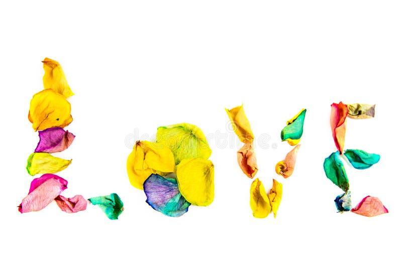 Αγάπη λέξης φιαγμένη από ροδαλά πέταλα στοκ φωτογραφίες με δικαίωμα ελεύθερης χρήσης