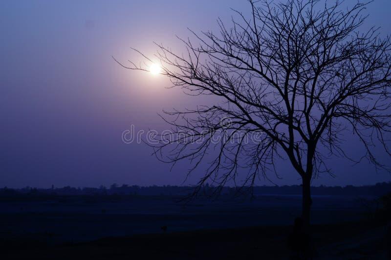 Αγάπη ηλιοβασιλέματος στοκ φωτογραφία με δικαίωμα ελεύθερης χρήσης