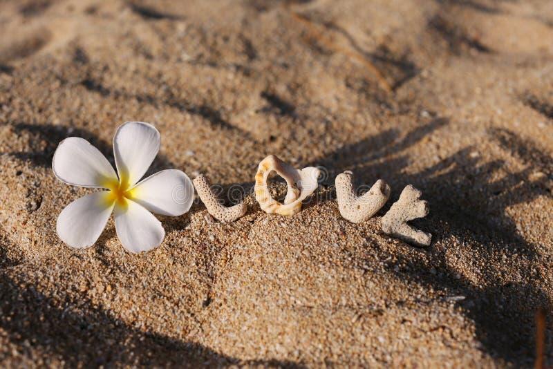 Αγάπη στην άμμο στοκ εικόνα