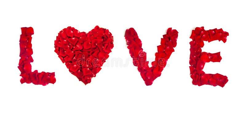 Αγάπη των ροδαλών πετάλων που απομονώνεται στο λευκό στοκ εικόνες
