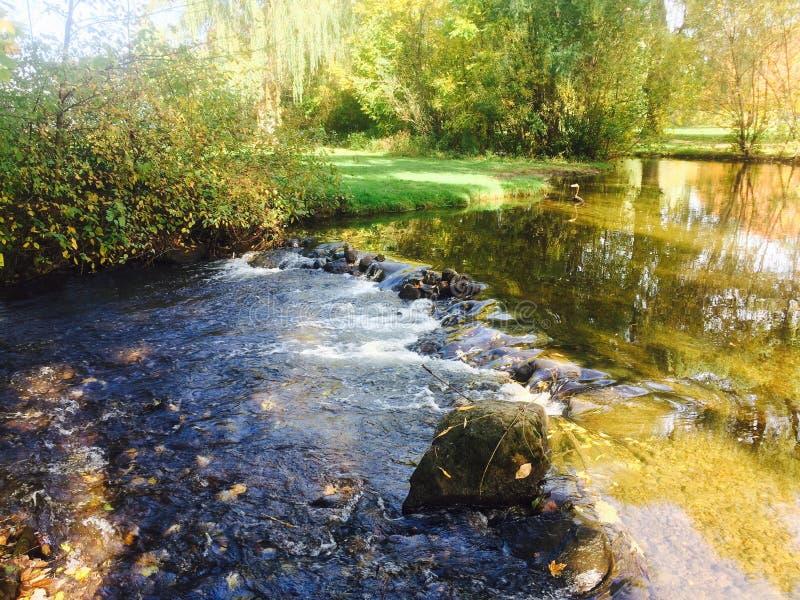 Αγάπη φύσης, λίμνη γλυκού νερού στοκ φωτογραφία με δικαίωμα ελεύθερης χρήσης