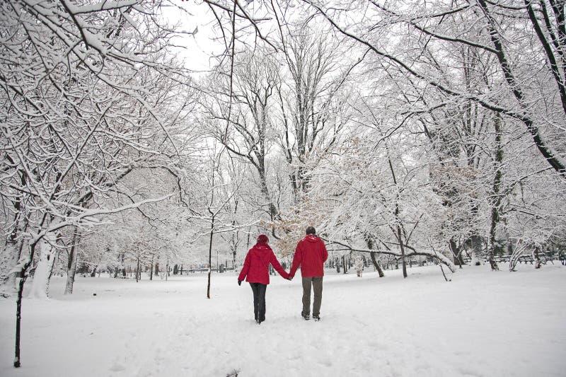 Αγάπη χιονιού στοκ εικόνες με δικαίωμα ελεύθερης χρήσης