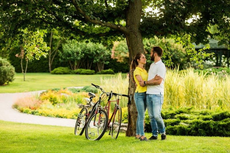 Αγαπώντας ζεύγος στο αγκάλιασμα κάτω από το δέντρο στοκ φωτογραφίες