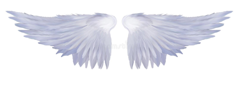αγγελικά φτερά στοκ εικόνα