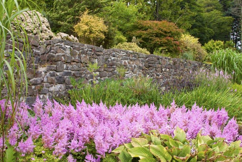 αγγλικός κήπος λεπτομέρειας στοκ εικόνες