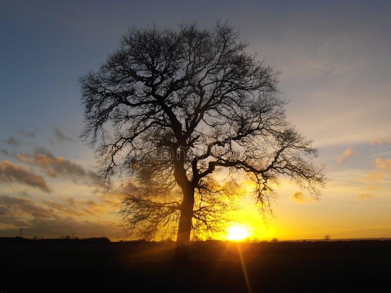 Αγγλικό ηλιοβασίλεμα στοκ φωτογραφίες με δικαίωμα ελεύθερης χρήσης