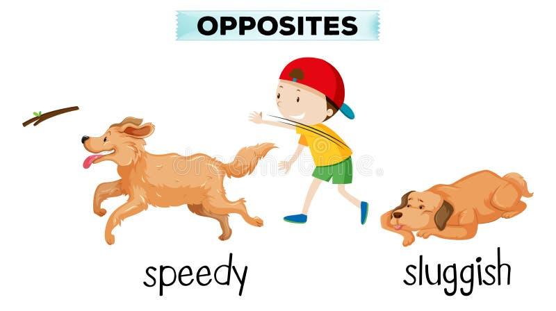 Αγγλικό λεξιλόγιο απέναντι από τη λέξη ελεύθερη απεικόνιση δικαιώματος