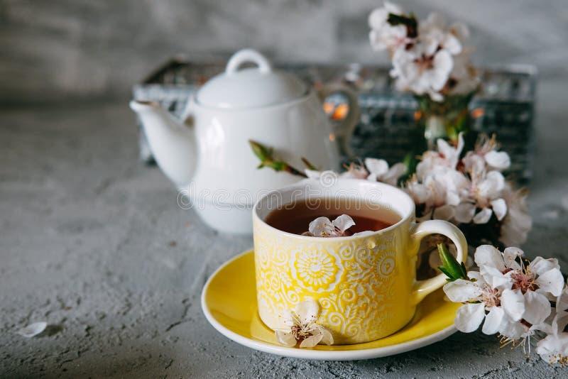 Αγγλικό τσάι προγευμάτων που εξυπηρετείται με τα brownies στοκ φωτογραφίες με δικαίωμα ελεύθερης χρήσης