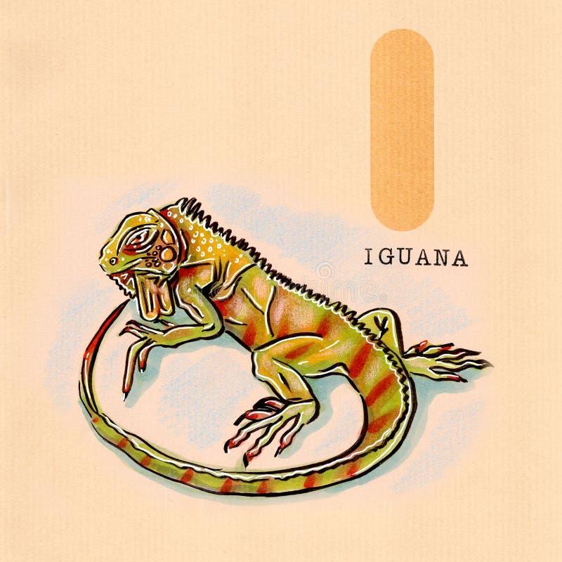 Αγγλικό αλφάβητο, Iguana διανυσματική απεικόνιση