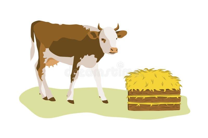 Αγελάδα ή μόσχος με το σωρό του σανού διανυσματική απεικόνιση