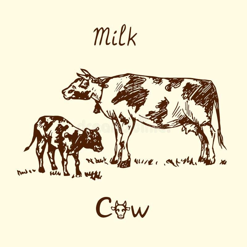 Αγελάδα και μόσχος που στέκονται την πλάγια όψη, χέρι που σύρεται doodle, σκίτσο, διανυσματική απεικόνιση ελεύθερη απεικόνιση δικαιώματος