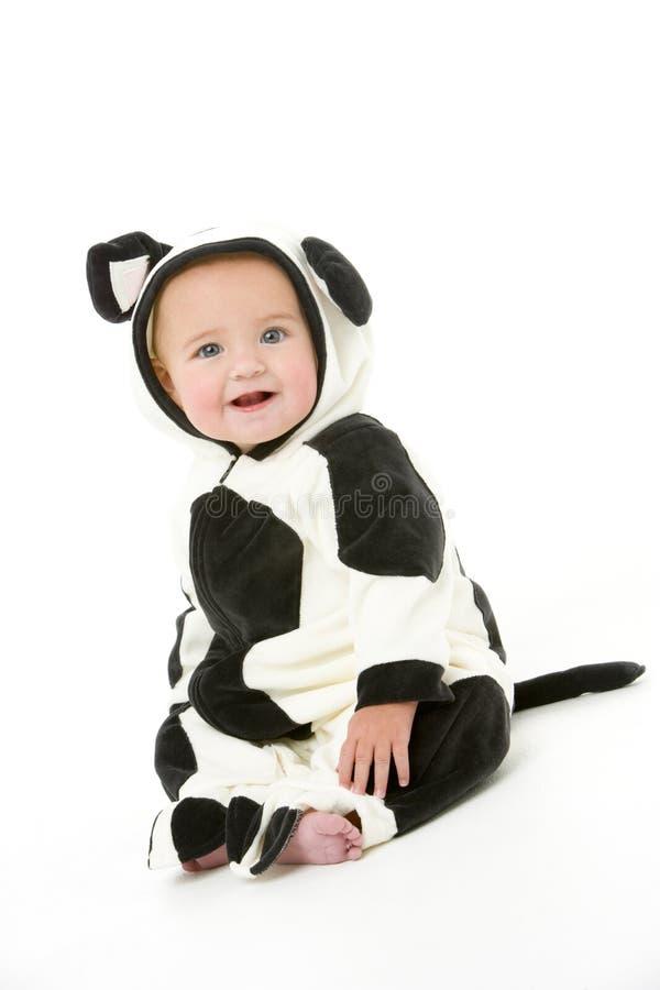 αγελάδα κοστουμιών μωρών στοκ φωτογραφίες