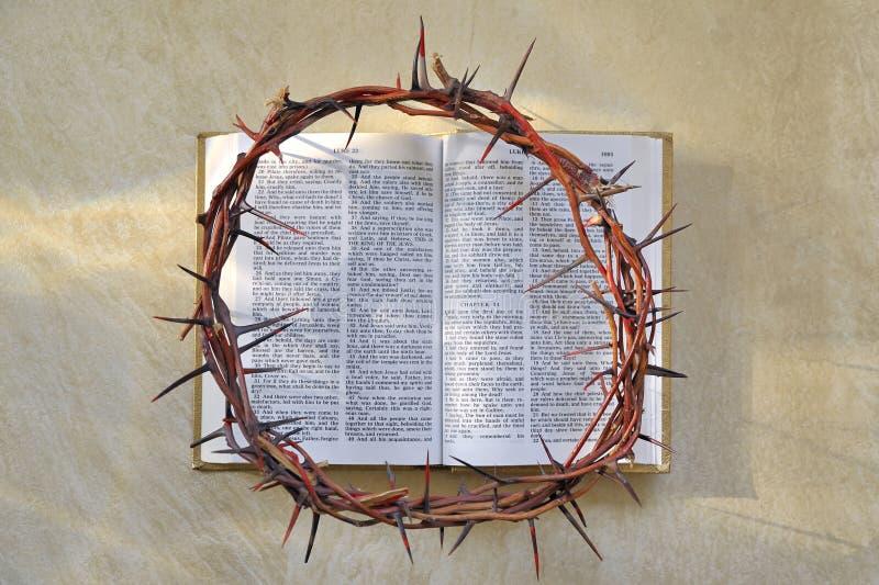 αγκάθια κορωνών Βίβλων στοκ φωτογραφία