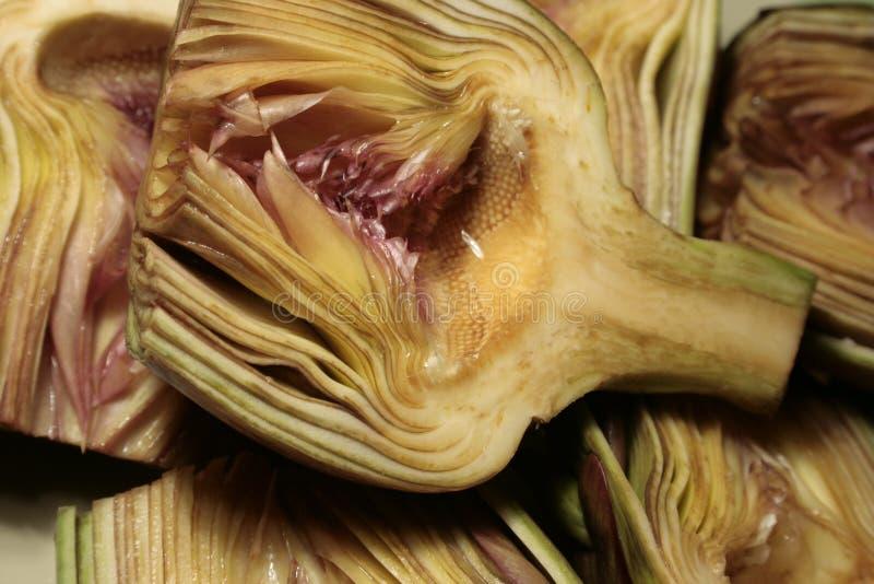 αγκινάρα στοκ φωτογραφία με δικαίωμα ελεύθερης χρήσης