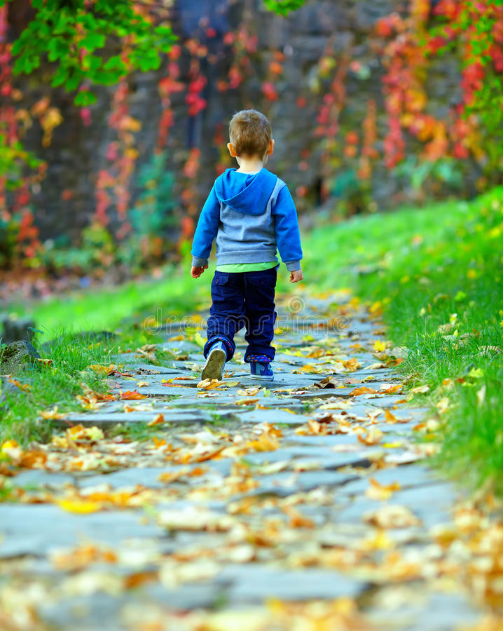 Αγοράκι που περπατά μακριά το μονοπάτι φθινοπώρου στοκ εικόνα με δικαίωμα ελεύθερης χρήσης