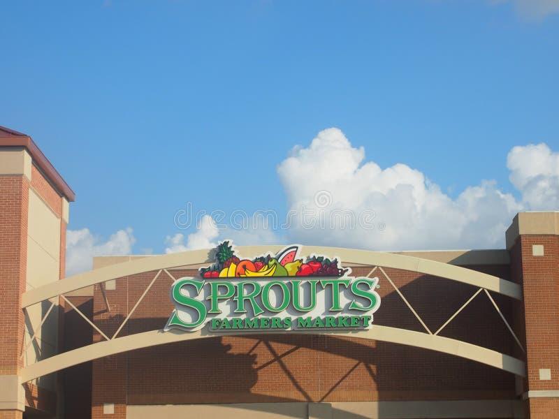 Αγορά αγροτών νεαρών βλαστών στο U Plano Τέξας S Α στοκ φωτογραφία