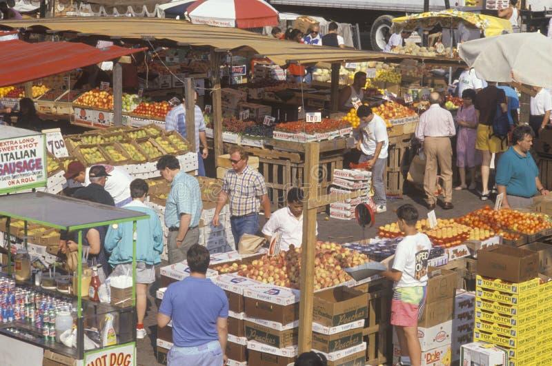 Αγορά αγρότη στη Βοστώνη, στοκ φωτογραφίες με δικαίωμα ελεύθερης χρήσης